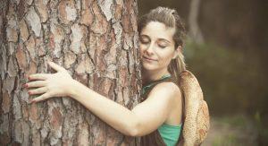 How to Hug a Tree