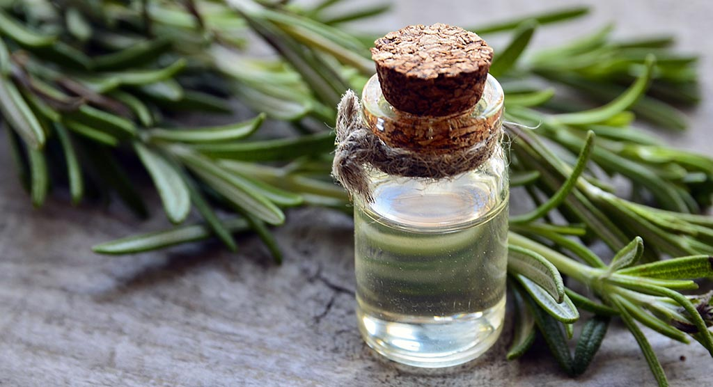 ROSEMARY FOR NATURAL BEAUTY